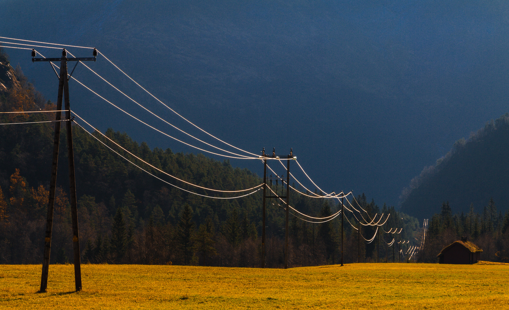08 Power Lines